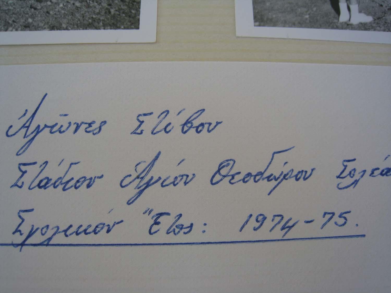 ekpedeusi9